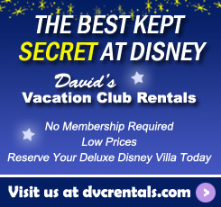 The Best Kept Secret at Disney