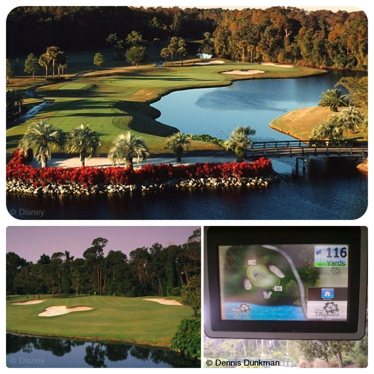 Magnolia and Palm Golf Courses