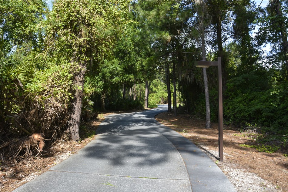 nature path 013