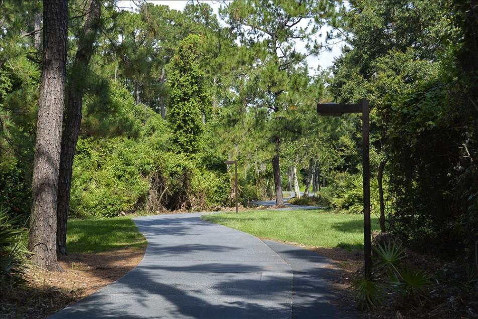 nature path 014
