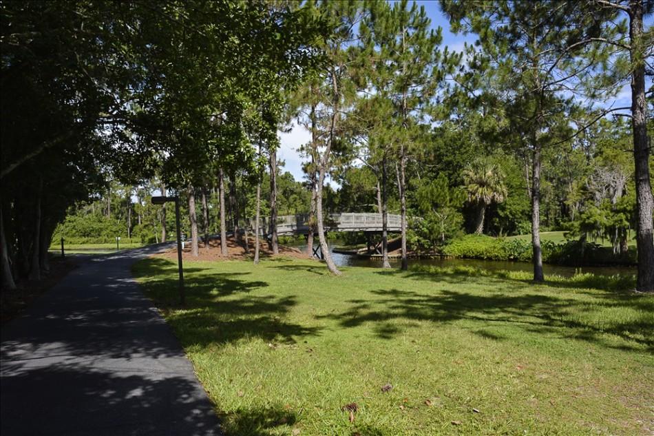 nature path 018