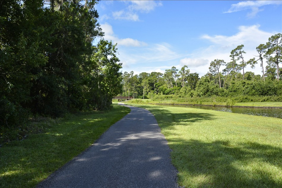 nature path 022