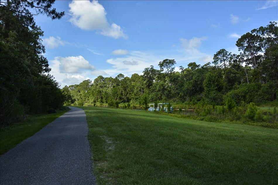 nature path 026