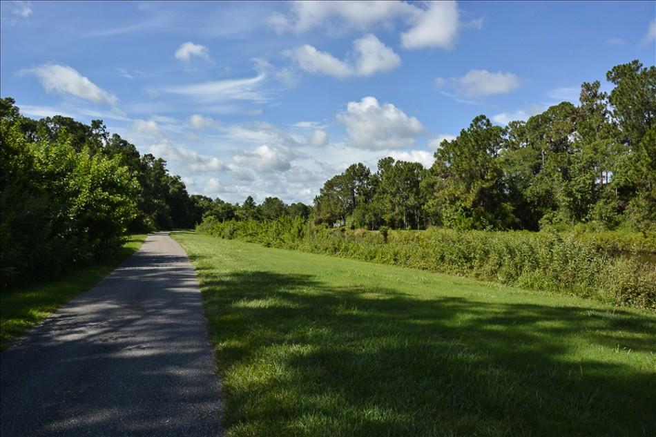 nature path 028