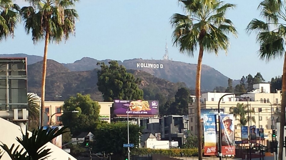 D1 hollywood sign
