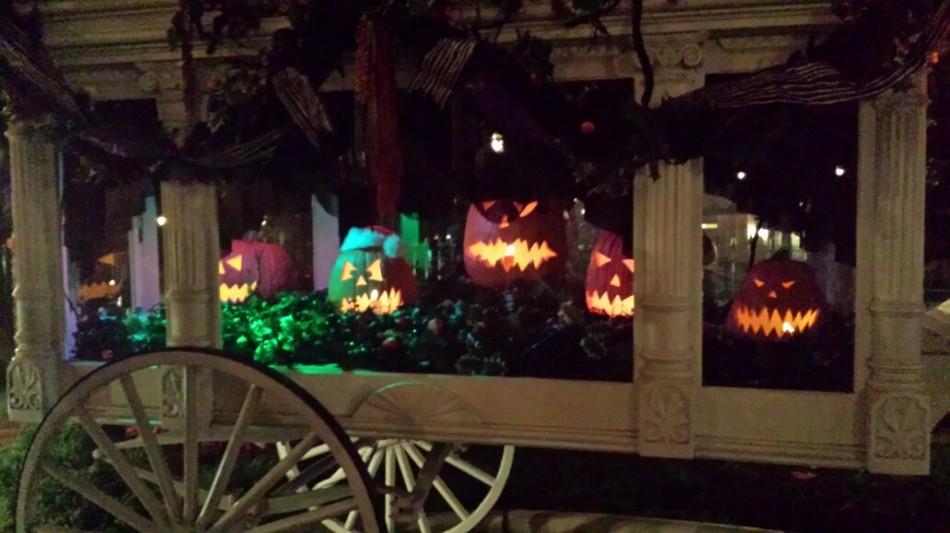 D4 hal Parade pumpkins