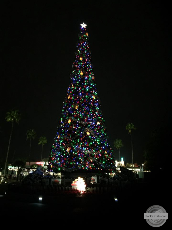 when you walk up to the gates of hollywood studios the first thing that will catch your eye is the beautiful larger than life christmas tree that is - Hollywood Studios Christmas Lights