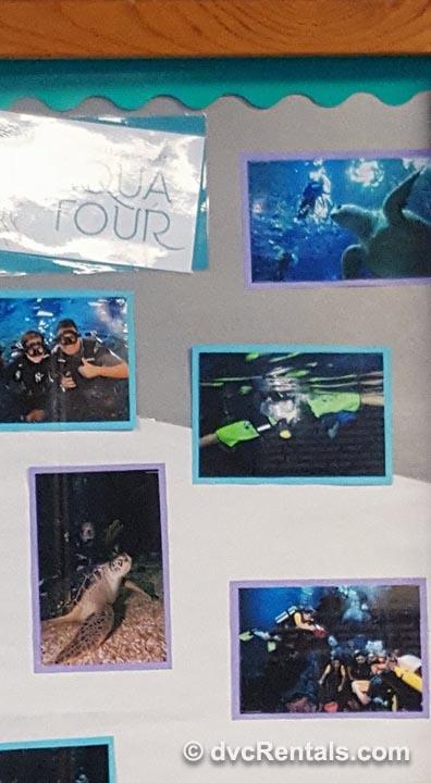 Aquatour Poster
