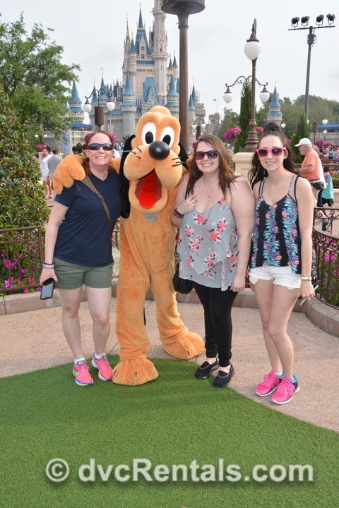 Team DVC Request at Disney