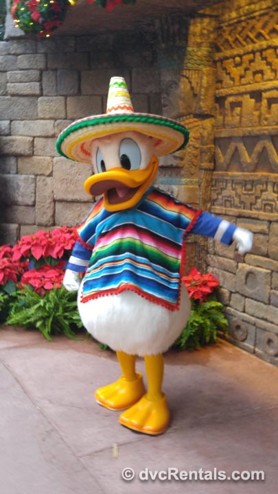 Donald Duck at Epcot Meet and Greets