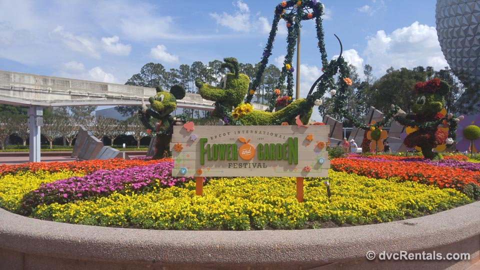 Flower Garden at Epcot