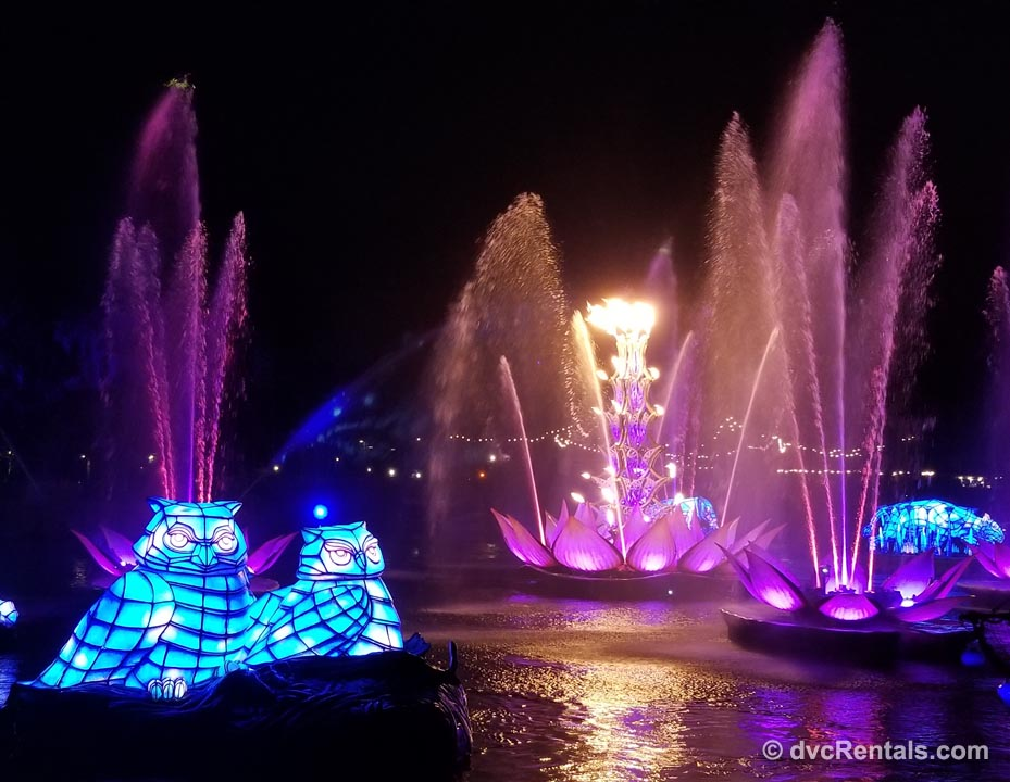 Disney Nighttime Spectaculars