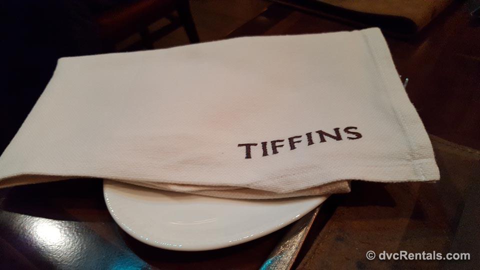 Cloth Napkin Tiffins