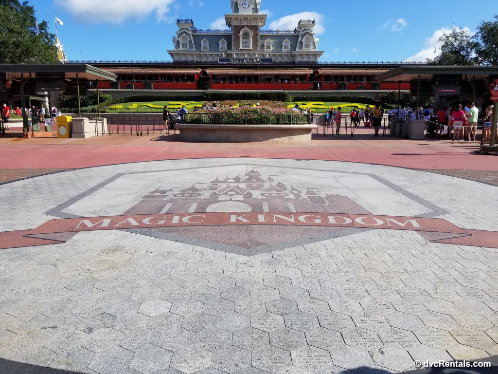 Inside the Magic Kingdom