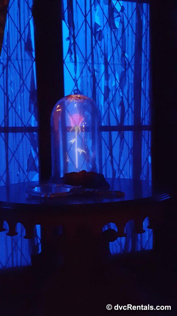 Rose Hologram