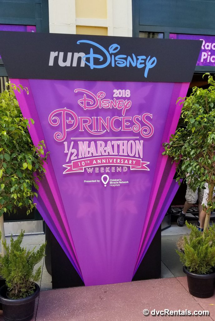 2018 Disney Princess 1/2 Marathon Banner