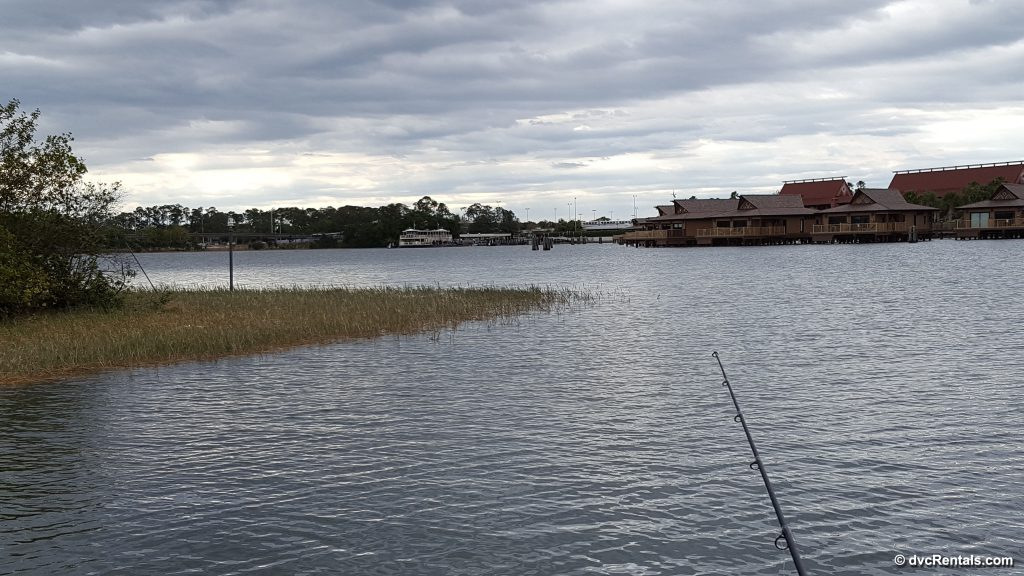 Fishing From Cove at Polynesian