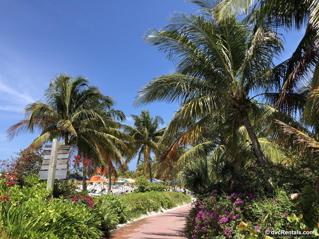 Scenery at Castaway Cay