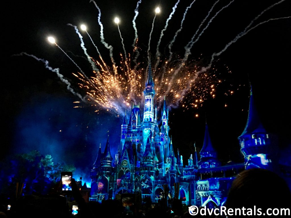 Cinderella's Castle with Fireworks in the background