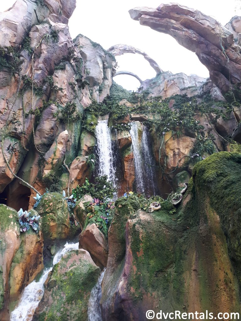 Additional image of Floating Mountains and waterfall within Pandora at Disney's Animal Kingdom