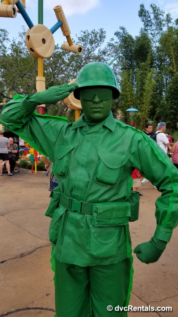 Member of the Green Army Patrol