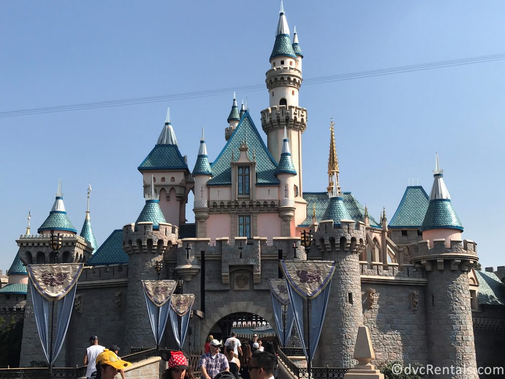 Castle at Disneyland