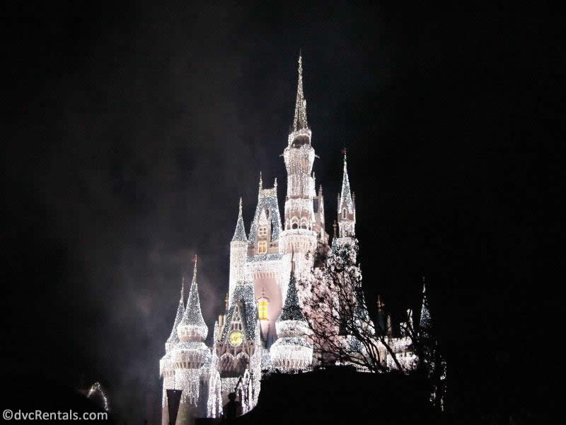 Cinderella Castle with Icicles