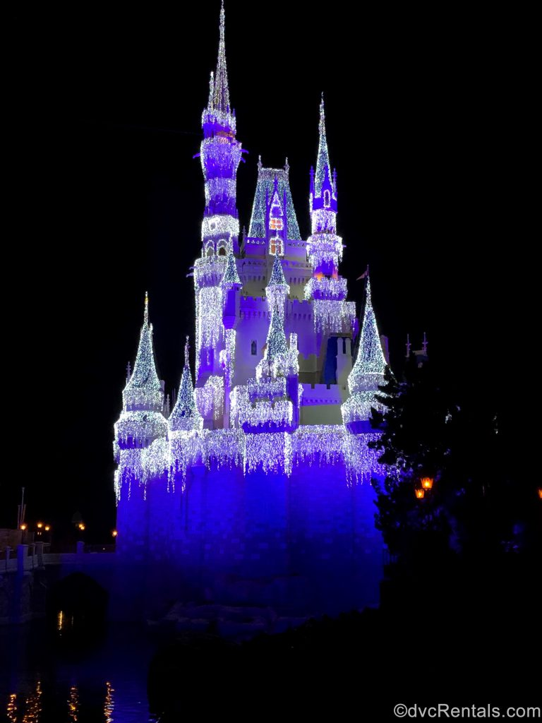 Cinderella Castle with icicle lights
