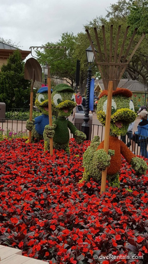Huey, Dewey, and Louis topiaries at Epcot's International Flower and Garden Festival 2019