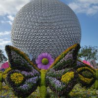 utterfly topiaries at Epcot's International Flower and Garden Festival 2019