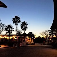 sunset over the entrance to Disney's Animal Kingdom – Kidani Village