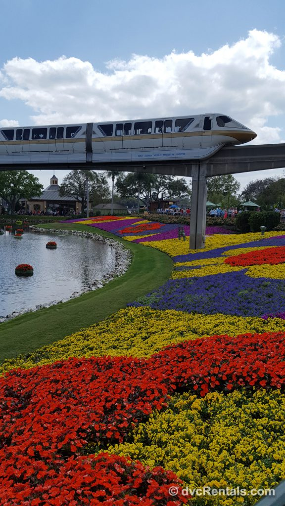 Flower beds at Epcot's International Flower and Garden Festival