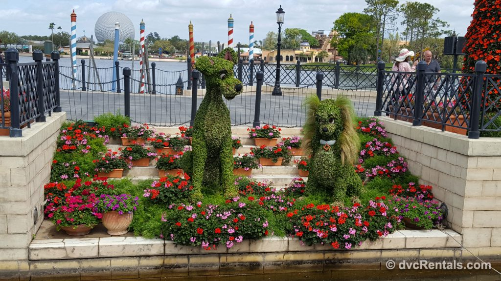 Lady and the Tramp topiaries at Epcot's International Flower and Garden Festival 2019