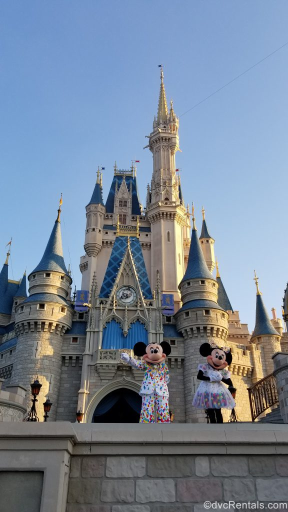 Mickey and Minnie in front of Cinderella Castle