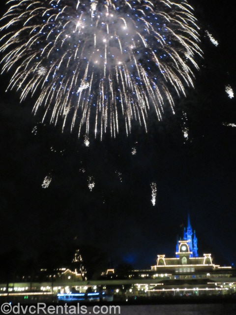 Magic Kingdom Fireworks