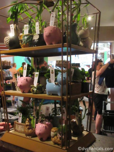 Land Pavilion Store at Epcot