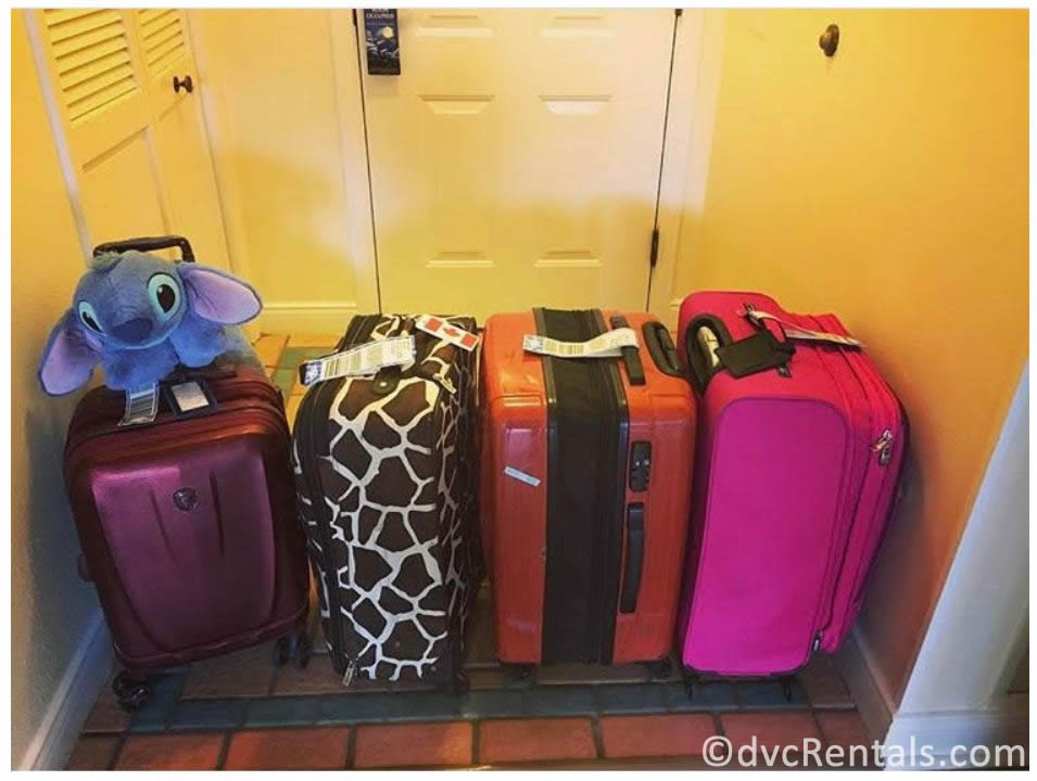 luggage with the Disney Cruise Line luggage tags on them