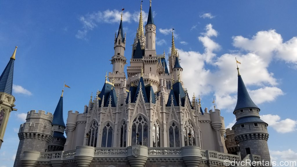 Picture of Cinderella Castle