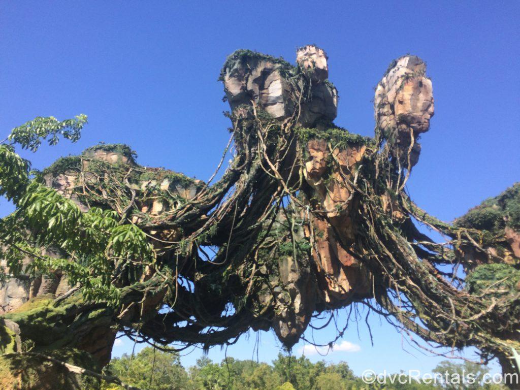 Floating mountains in Pandora at Disney's Animal Kingdom