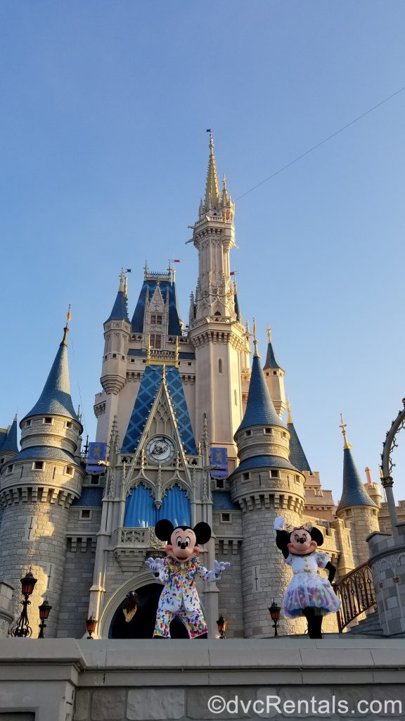 Mickey and Minnie Mouse in front of Cinderella Castle