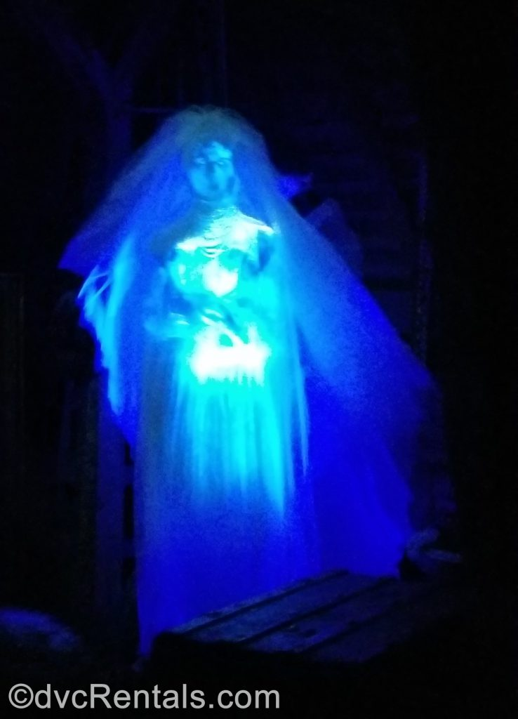 Bride in the Haunted Mansion