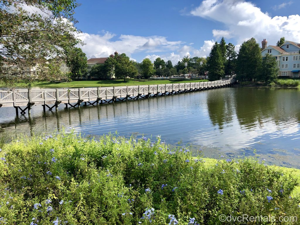 Disney's Saratoga Springs grounds with bridge to the Carriage House
