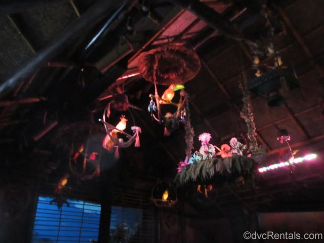 singing birds from the Enchanted Tiki Room at Disney's Magic Kingdom