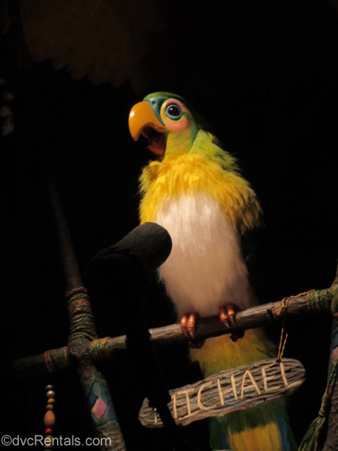 Michael a singing bird from the Enchanted Tiki Room