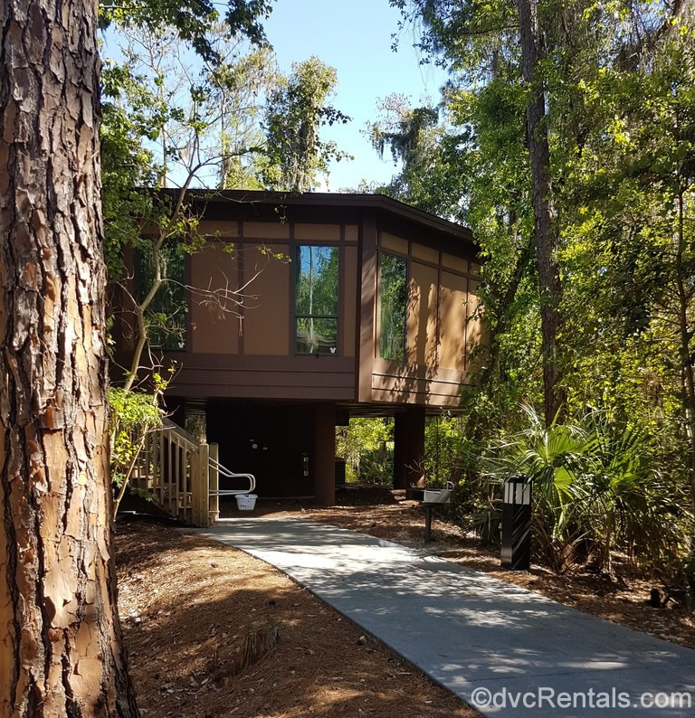 Treehouse villa at Disney's Saratoga Springs