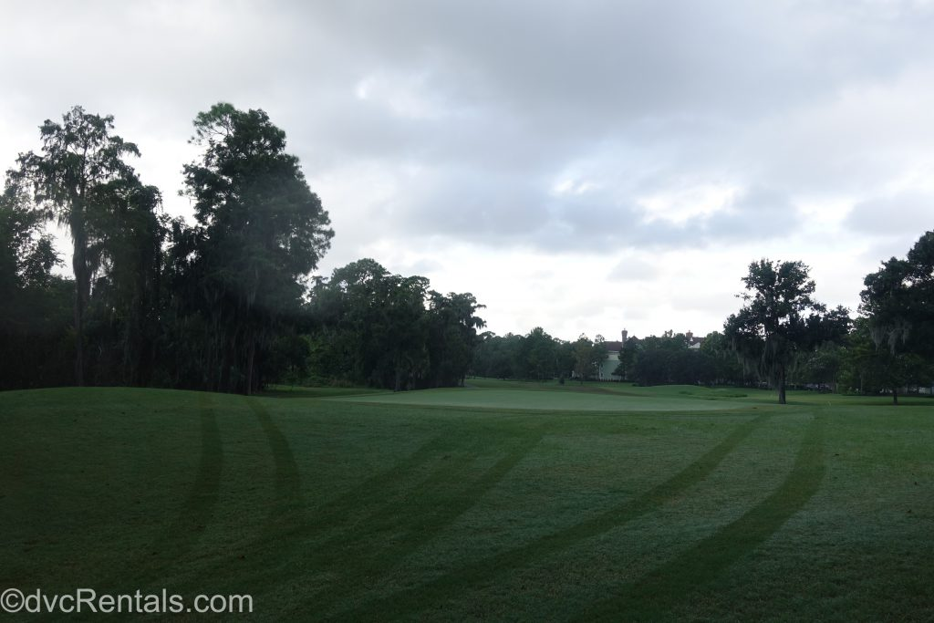 Golf course at Disney's Saratoga Springs Resort & Spa