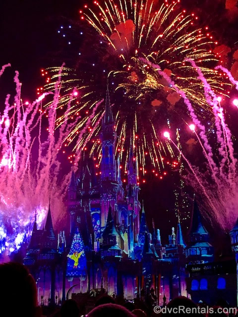 Fireworks at Disney's Magic Kingdom