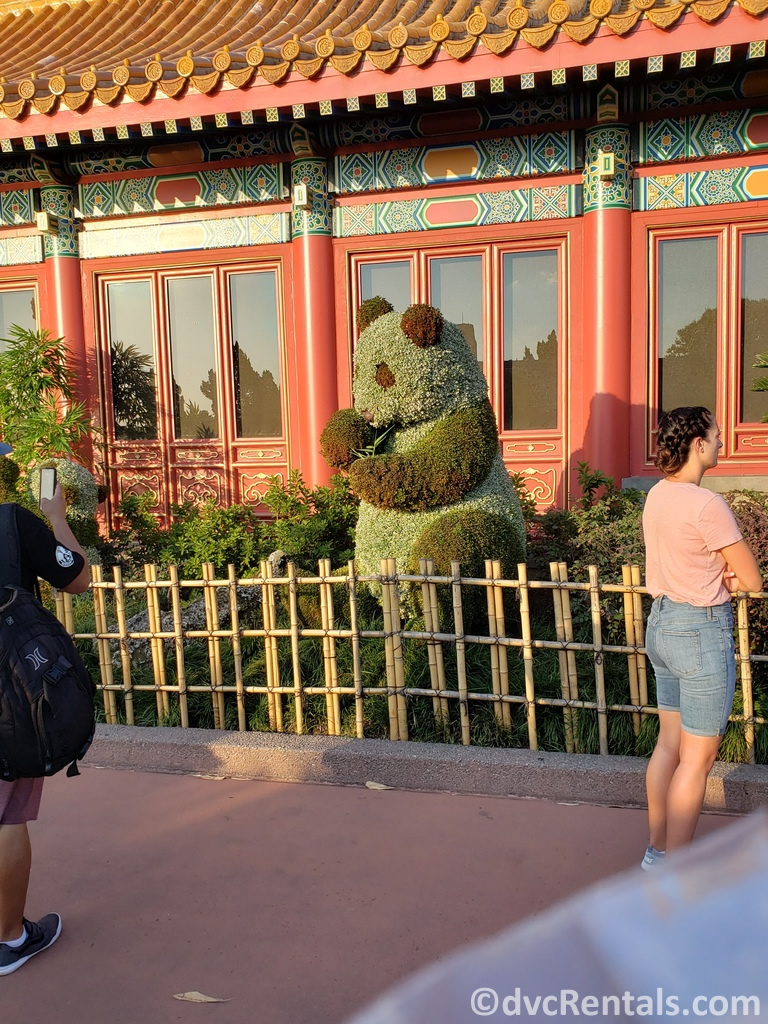 Panda Topiary at the Epcot International Flower and Garden Festival