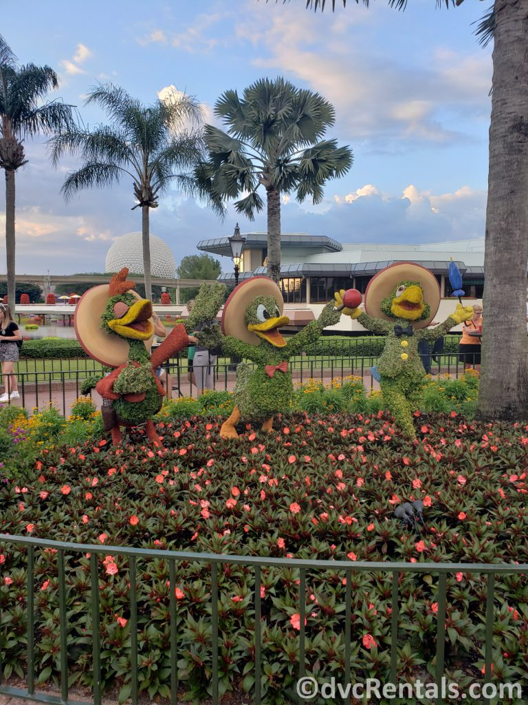 The Three Caballeros' topiaries at the Epcot International Flower and Garden Festival