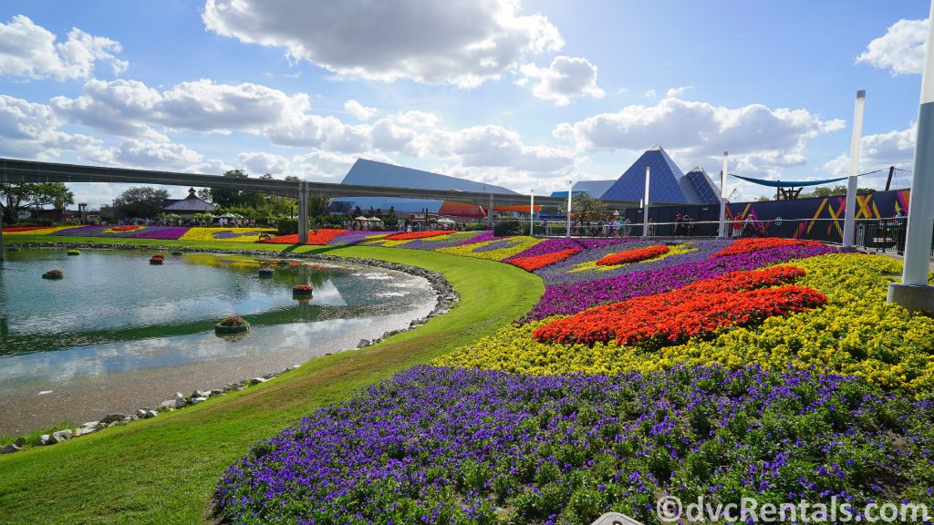 Flower beds at the Epcot International Flower and Garden Festival